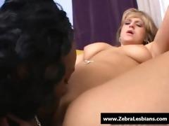 zebra cuties - ebon lesbo hotties fuck